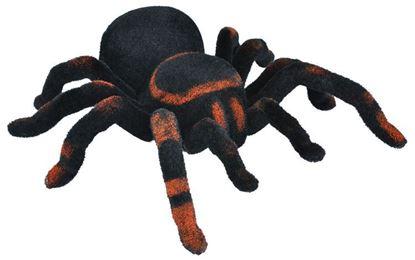 Obrázek Tarantule na dálkové ovládání