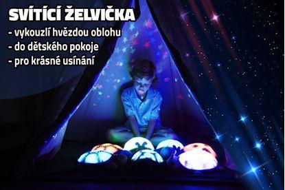 Obrázek Noční svítící želvička - modrá